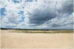 wolkenlanschap (HP012316) (Hetwie) Tags: trees summer nature clouds landscape bomen nederland natuur wolken zomer ven landschap noordbrabant zandverstuiving loonseendrunenseduinen udenhout