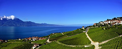 Vignobles de Lavaux (Diegojack) Tags: nikon nikonpassion d7200 paysages lac panorama lavaux lman corniche chexbres rivaz vignes vignobles villages