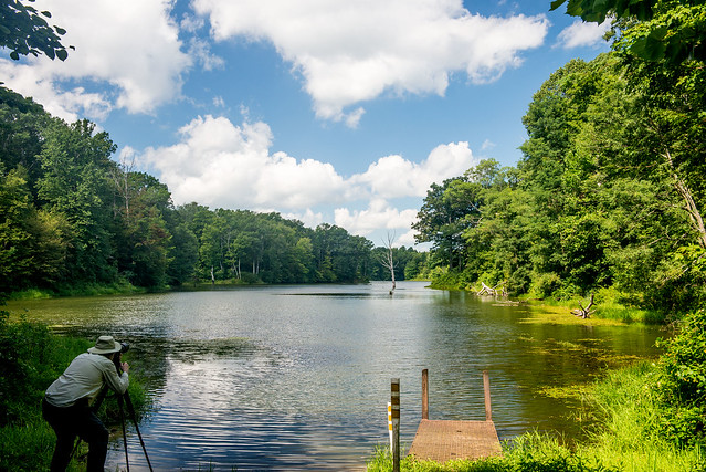Big Oaks National Wildlife Refuge - Old Timbers Lake - August 12, 2016