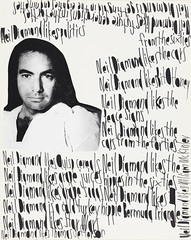 Neiil Diamond likes Politics (Neil Diamond), 2007 (Fleisher/Ollman) Tags: withoutborders