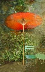 Il fait trs chaud... (Alda Cravo Al-Saude) Tags: umbrella exotic hot sun garden