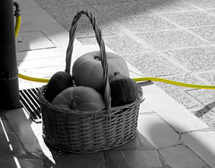 Autumn country life (vittorio vida) Tags: autumn country life pumpkins fall bn bw still stilllife pipe yellow basket selection color
