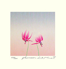Japanese trout lily (Japanese Flower and Bird Art) Tags: flower trout lily erythronium japonicum liliaceae momo shimizu modern screenprint print japan japanese art readercollection