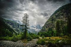 Gran Paradiso (robmanf55) Tags: montagna cielo nuvole cielonuvoloso cloudysky stormysky valdaosta paesaggio albero alpi