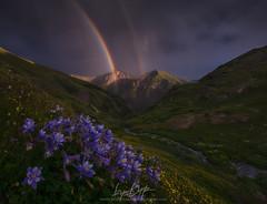 Making Haste (Ryan Dyar) Tags: san juan mountains colorado juans mountain rainbow flowers wildflower columbines sunset storm monsoon rain clouds light ryan dyar video tutorial