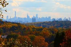 Big Apple Trees (jfox443) Tags: new nyc newyorkcity autumn usa newyork fall skyline cityscape manhattan empirestatebuilding thebronx foilage yonkers vancortlandpark thebigapple tibbetspark nikond7000