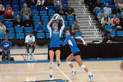 DSC_0480 (bruin805) Tags: ucla volleyball bruins womensvolleyball pac12