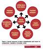 63MD15_1 (sportEX journals) Tags: youth teenagers athletes injured rehabilitation youngathletes sportex sportsinjury sportexmedicine sportsrehabilitation