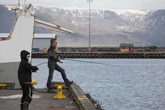reykjavik - iceland - 10 (hors-saison) Tags: island iceland islandia reykjavik islande izland  islanda islndia ijsland islanti
