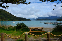 Portage, Kenepuru Sound (flyingkiwigirl) Tags: head sound portage campground doc marlborough sounds kenepuru