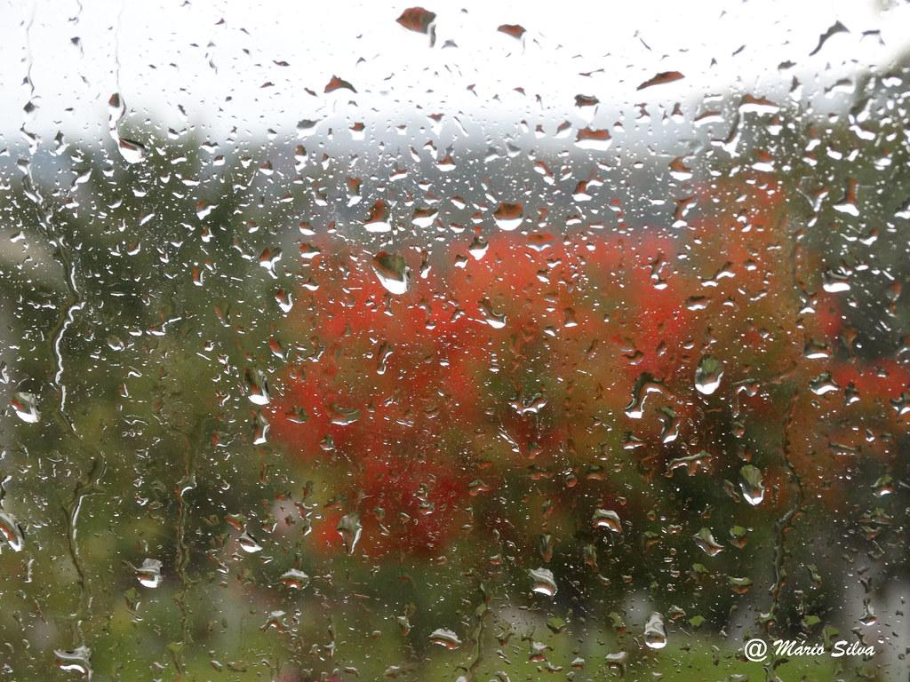 Águas Frias (Chaves) - ... e a chuva cai ... numa tarde de outono ...