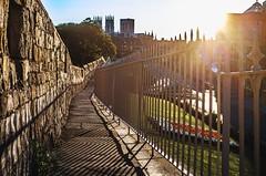 York wall walk - that's a tongue twister (flindersan) Tags: smcpentaxa28mmf28