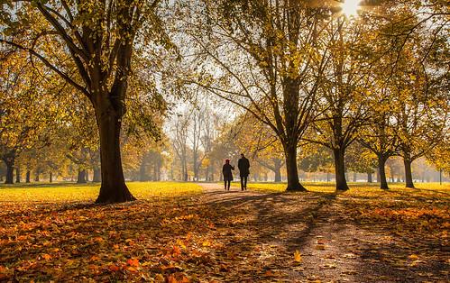 1st Kensington Gardens