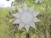 White Window Star