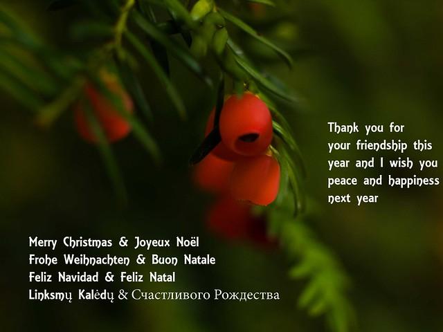 ~ mes meilleurs voeux ~ my best wishes ~ liebe Grüsse ~