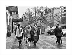 Prague - the locals... (Lady Haddon) Tags: prague czechrepublic 2014 kimhaddonphotography nov2014