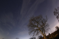 Geminid Meteor Shower 2014 (Radical Retinoscopy) Tags: trees winter tree clouds astrophotography orion astronomy nightsky meteor wintersky geminid meteorshower canoneost2i canon815mm ioptronskytracker