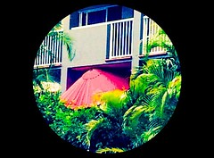 Umbrella Shelter