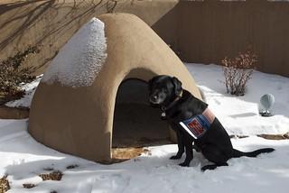 Dog Adobe in Santa Fe