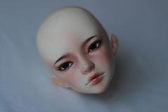 FS: Little Rebel Seven head NS (Guinevere88) Tags: amber seven bjd soom abjd chrom littlerebel