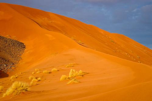 Leuchtende Sanddünen in der Abendsonne