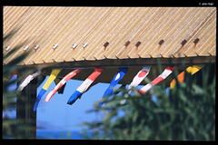 IMG_5218 (anto-logic) Tags: lighting blue light sea sky sun hot love primavera beach colors beautiful photoshop canon wonderful walking effects eos spring nice focus warm mare dof skin superb bokeh outdoor pov tan streetshots naturallight flags depthoffield clear pointofview filter cielo crop framing lovely charming fabulous sole azzurro colori ombrelloni postproduction spiaggia magnificent multicolor lightroom bandiere passeggiata effetti filtro sereno abbronzatura alienskin profonditdicampo puntodivista postproduzione inquadratura bandierine