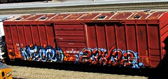 mecro - sexes (timetomakethepasta) Tags: train graffiti oar boxcar freight sexes cdc mecro