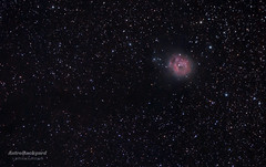 IC 5164 - Cocoon Nebula (AstroBackyard) Tags: travel light sky black nature beautiful star big colorful image background object space astro telescope galaxy nebula astronomy supernova universe cosmos astrology constellation cocoon ic5146