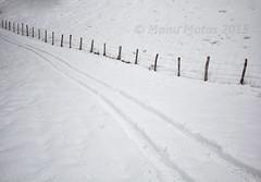 (ManuMatas) Tags: nieve cerca huella rodada