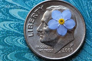 5-23-16 - Smaller Than a Coin
