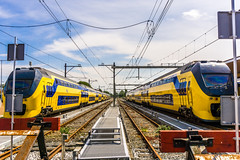 NS Railway Station (pel16931) Tags: sea holland water netherlands station train wadden sand marine ns nederland noordzee zee nl trein noordholland zand denhelder nieuwediep nordsea sonyilce6000