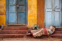 Puducherry (chamorojas) Tags: 60d chamorojas albertorojas india puducherry sleeper pondicherry