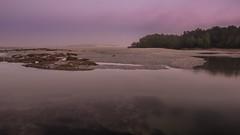Beautiful misty morning tidal creek (--Welby--) Tags: ocean morning sea mist beach misty creek port sunrise coast still sand flat australia smith western wa kimberley tidal broome