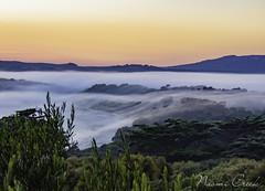 naomi160426-027-HDR-Edit (Naomi Creek) Tags: trees sky sun mist beach water misty fog sunrise rocks flare gradient tasmania killiecrankie flindersisland