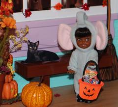 Halloween 2015 IMG_3838 (Creative.Gal.62) Tags: fall halloween ken barbie tommy kelly diorama