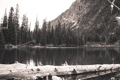 B&W Rowe Lake (leah.kling) Tags: trip trees sky mountain lake canada mountains green water forest river landscape photography waterfall stream hike trail alberta waterton
