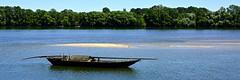 France 2016 - Le Thoureil (philippebeenne) Tags: france eau rivire loire fleuve touraine anjou lethouriel