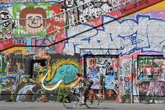 Urban Female Cyclist, Wein, Austria. (westport 1946) Tags: austria wein vinnea kunstwerk kunst urbanart streetart graffiti multicoloured donankanal femalecyclist female women cyclist bike bicicletas bicycle biciclette bicicletta metalrailings colourful sidewalk pavement cyclepath urbancyclist bikeinthecity farbenfroh