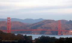 Golden Gate (taylor.michaelj) Tags: goldengatebridge sanfrancisco bridge bay mjt d7000 nikon