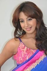 South Actress SANJJANAA PHOTOS SET-1 (11)