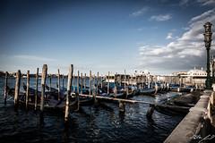 2016-08-12_Venedig - Venice - gritty version_IMG_8089 (dieter_weinelt) Tags: bluesky brcken dieter fiona gondeln kanal kanle melanie morgenstimmung sommer2016 sonnenschein tauben touristen venedig venice victoria blauerhimmel boats boote bridges canals doves empty erarlymorning fastleer gondolas morgens nearlyempty notourists onlyworkers summer2016 sunshine tourists
