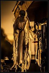 Halloween decorations (K-Szok-Photography) Tags: halloween decoration ghost canon canondslr canon50d 50d backlight socal inlandempire sbcusa california kenszok kszokphotography