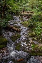 Forest Cascade (EHPett) Tags: blueridgeparkway fallingwater virginia stream cascade forest brook