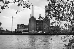 Animals (Mona - B) Tags: uk pink england music dog london monochrome station animals rock thames canon power sheep riverside album pinkfloyd jacket pigs londres waters psychedelic 1977 floyd battersea seventies sixties pimlico hipgnosis tamise