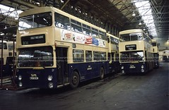 WMPTE 5546 & 5555 (Lady Wulfrun) Tags: christmas birmingham december garage 1985 lt solihull yardleywood fleetline 189 londontransport dms yw 5555 5546 80e wmpte fleetlines mlh324l mlh336l