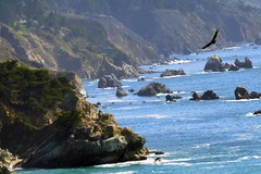 pacific Coast Highway (F R Childers Photography) Tags: bigsur pch highway1 hwy1 californiacoast pacificcoasthighway californiahighway1 ca1 californiapch thecoasthighway