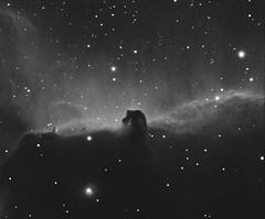 Horsehead Nebula in Orion (astroturtle) Tags: horse head nebula orion astronomy alpha ic434 horsehead hydrogen g11 starlight xpress halpha losmandy astrophotograhpy autoguider starlightxpress astrotech astrometrydotnet:status=failed astronomik starshoot mx716 65edq astrometrydotnet:id=nova897618