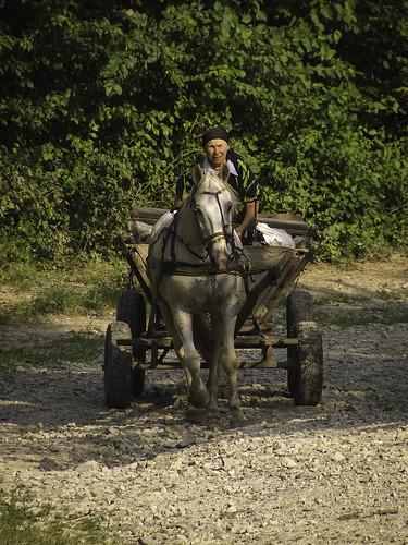 Ukraińskie drogi i ruiny w Kudryńcach