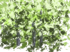 2014.12.07 SketchClub's Leafy Brush (Julia L. Kay) Tags: sanfrancisco woman art mobile female club digital sketch san francisco artist arte julia kunst kay daily dessin peinture 365 everyday dibujo app touchscreen artista mda fingerpaint artiste knstler iart ipad isketch mobileart idraw juliakay julialkay iamda mobiledigitalart fingerpainterouchdigitalmdaiamdamobile sketchclubapp sketchclubapponly artfingerpaintersketchclubclubappsketch