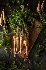 Raw Organic Parsley Root (brent.hofacker) Tags: food white plant green nature vegetables yellow garden leaf salad healthy raw natural bright spice harvest vegetable fresh gourmet delicious health ingredients vegetarian bunch medicine organic veggies diet agriculture root parsley heap herb freshness healthyfood ripe nutrition ingredient vitamin nutrients parsleyroot